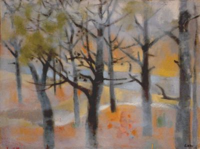 The Woods (from Betty's window) 1970s  oil.